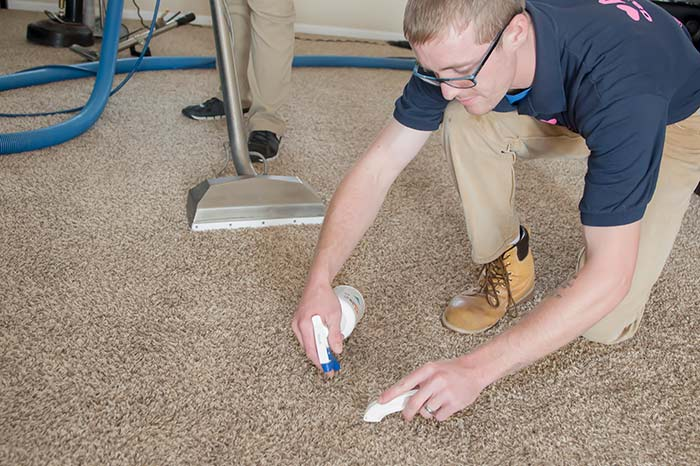 Removing a stain with carpet spotter