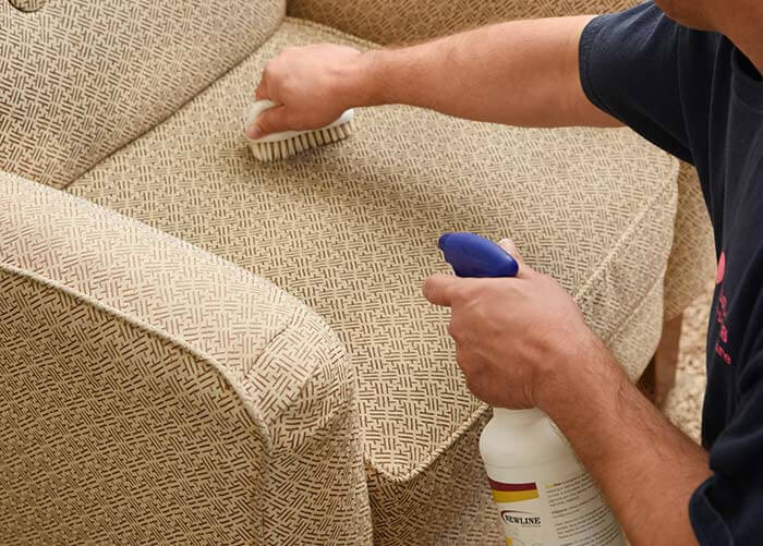 removing upholstery stains on a chair with spotter
