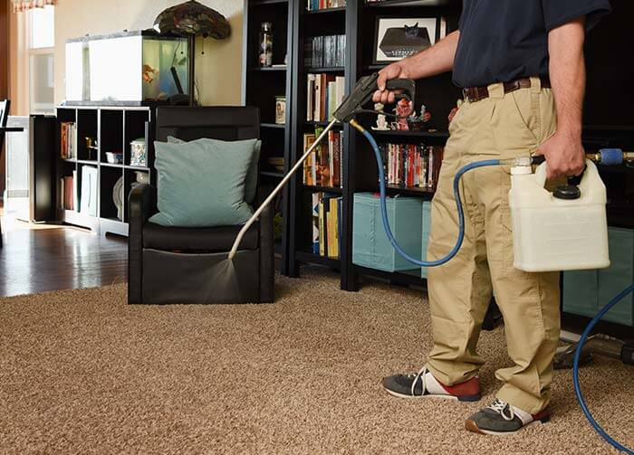 applying scotchgard evenly on carpet
